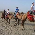 Riding a camel in Xinjiang's Taklamakan Desert