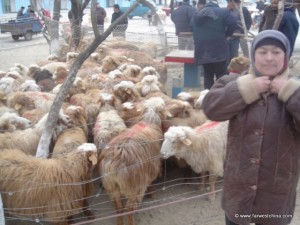 A woman selling sheep during the Corban festival in China