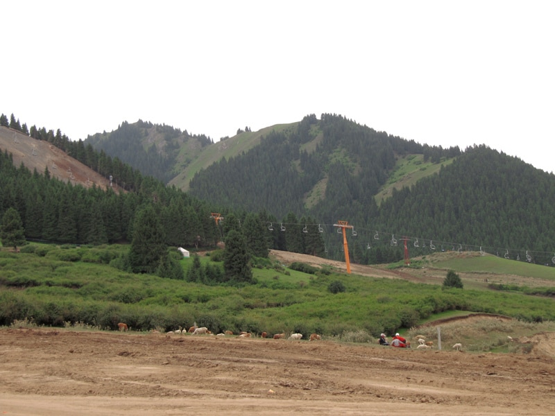 Xinjiang's Nanshan grasslands being bulldozed for a new golf course