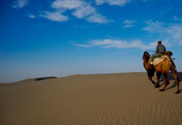 A camel treking through the Xinjiang desert in China