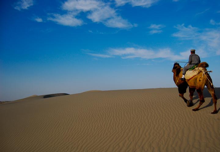 Xinjiang Desert and Camel: Pic of the Week