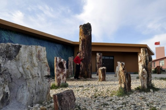 Petrified Wood Museum at the Five Colored Hills Park in Xinjiang, China