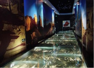 The corridor to the Silk Road display in Urumqi's Xinjiang Museum