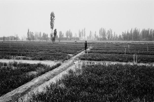 Beautiful, timeless scenery from Xinjiang, China by Ryan Pyle