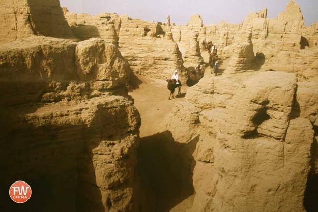 Camels Trekking through Turpan's Jiaohe Ancient City Ruins