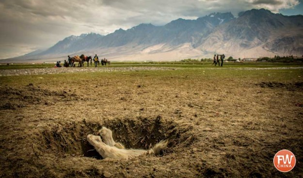 A goat carcass in the hole during a game of Buzkashi in Tashkorgan Xinjiang