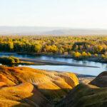 Xinjiang Beauty